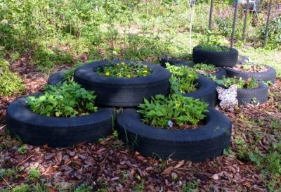 Urban flowerbed made from a stack of old tires.