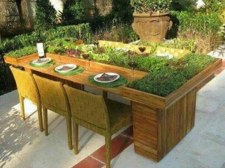 Planter table with vegetation growing in the tabletop.
