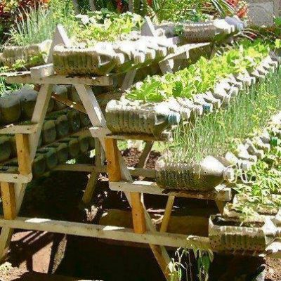 Repurposed bottles as planters on a terraced cultivation table.