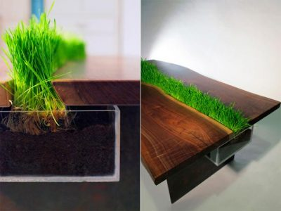 Planter made of perspex, embedded in a tabletop.