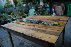 Homemade table with planter in the tabletop.