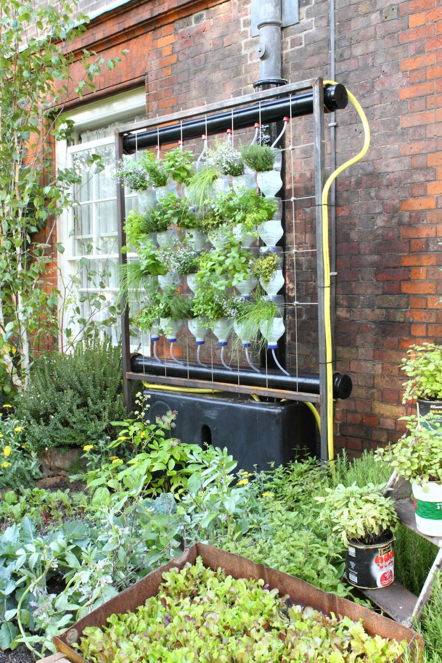 Wall garden with hydroponic cultivation and recirculating system for feeding the plants.