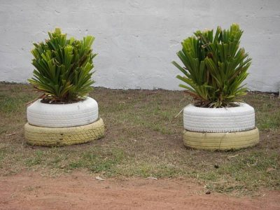 Repurposed tires in use as planters and roadside markers.