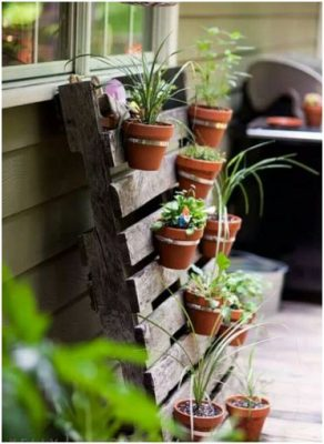 Hanging plant pots suspended on a vertical pallet.