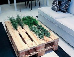 Planter table made of pallets, low by the ground coffeee table in lounge style.