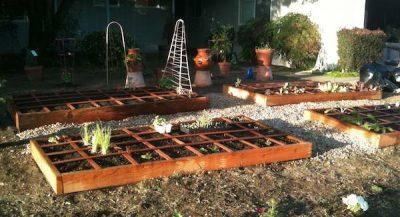 Square foot urban garden design for planters.