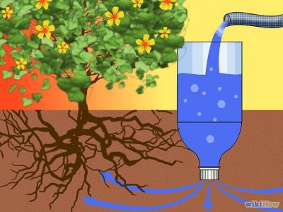 Slow irrigation with water filtration between the root zone.