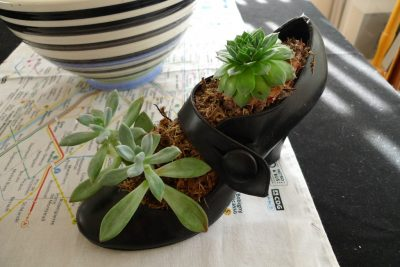 Ladies shoe recycled and repurposed as pot for plants.