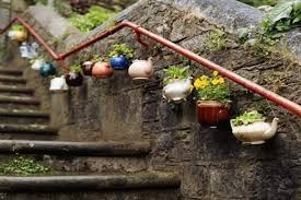 Planters made from old teapots, repurposed as plant pots.